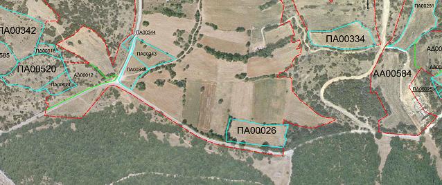 Απόσπασμα κυρωμένου δασικού χάρτη